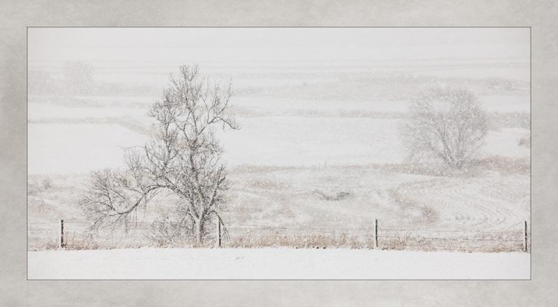 Snow_2014_02_20_2647