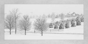 Snow_2013_04_11_8416.jpg