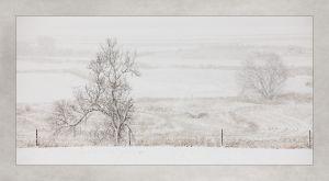 Snow_2014_02_20_2647.jpg